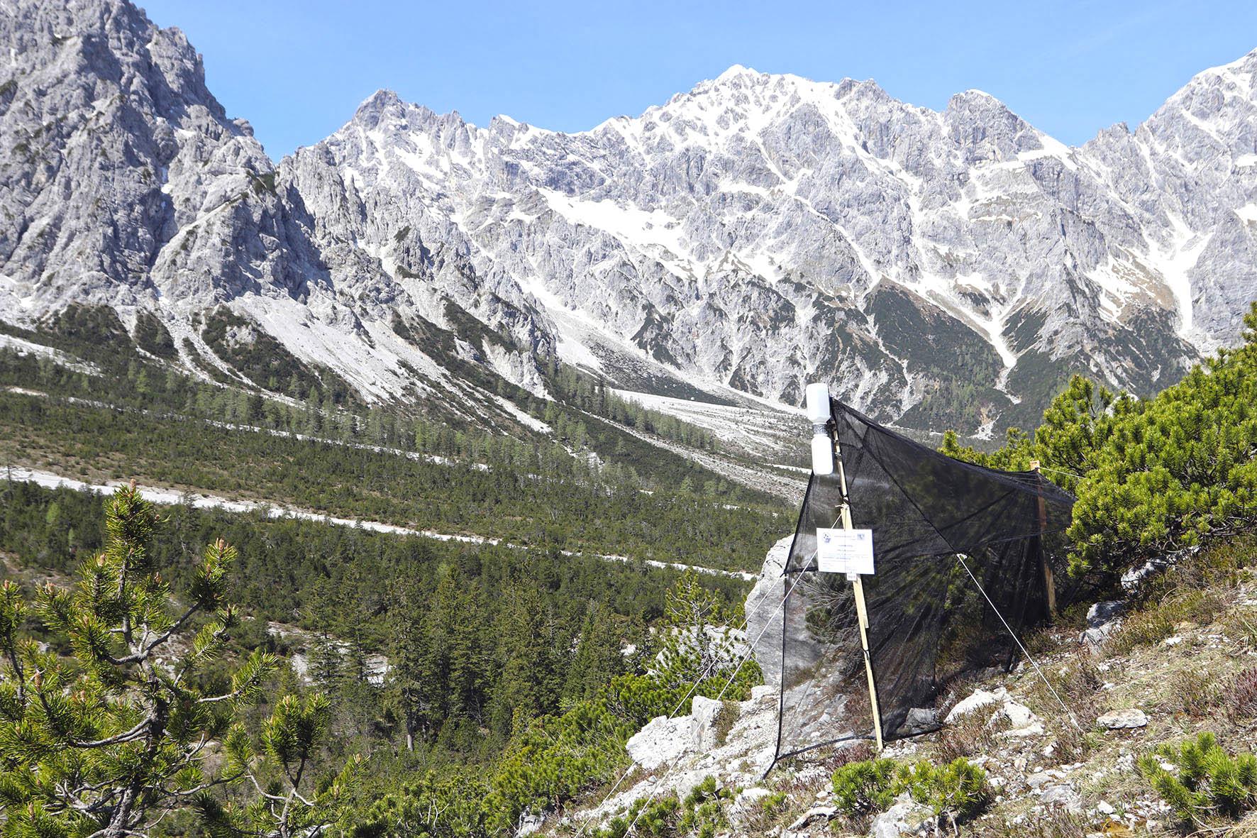 Pressebild: Forscher erheben derzeit auf 215 ausgew��hlten Fl��chen die Biodiversit��t des Nationalparks Berchtesgaden. So genannte ��Malaise-Fallen�� dienen der Erfassung der Insektenvielfalt.