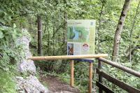 Nationalpark-Mitarbeiter bringen die Beschilderung zur Sperrung des Vegetationsschutzgebiets im Gelände an.